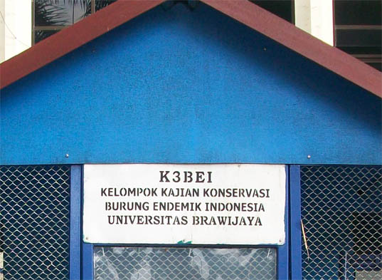 Konservasi burung endemik di Universitas Brawijaya Malang